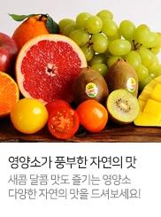 신선식품_자연영양소_T