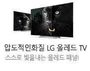 LG 올레드 TV_k