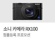 소니 RX100