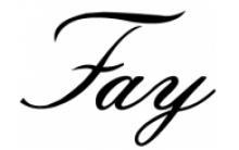 페이(Fay)