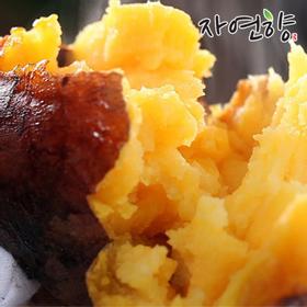 자연향 해남 꿀 고구마 특.상 사이즈 10kg