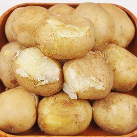 [푸르젠] 감자 5kg (대)