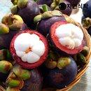 [자연식탁]열대과일의 여왕,고당도 태국 생망고스틴 2kg (20~28과내외)