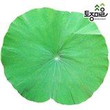 [토종마을]국산 냉동연잎2kg X 2개