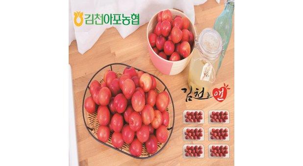 [대사이즈] 김천 대석 자두 6팩 (팩당 750g, 총 4.5kg)