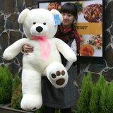 [바보사랑]베스트베어 120cm 곰인형 + 하트쿠션