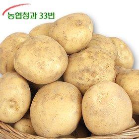 [농협청과33번] 포슬포슬 감자 10kg 중 사이즈