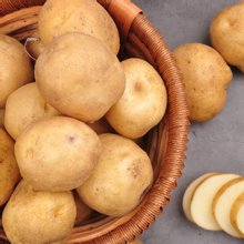 [푸르젠] 포근포근 햇 감자 5kg (특)