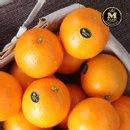 엠팍 블랙라벨 네이블 오렌지 중소과 24과 x 2박스