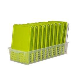 [실리쿡] 냉동실수납용기 컬러 납작2호트레이세트 (11종)