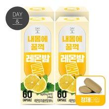 [황토농원]데이앤 내몸에 꿀꺽 레몬밤톡(60정) 4박스/레몬밤추출분말(총 8개월)