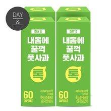 [황토농원]데이앤내몸에 꿀꺽 풋사과환(60정) 4박스/풋사과추출분말(총 8개월)