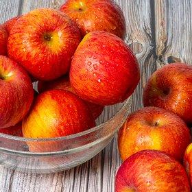 [이슬마루] 경북의성 사과 (흠과) 10kg(52~65과)