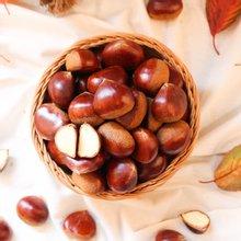 [산지장터] 충청남도 부여 황인옥님의 유기농 알밤 4kg 대
