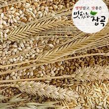 맛있는 잡곡/ 압맥 900g
