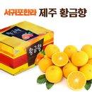 [서귀포한라]제주황금향 5kg(1박스) 박스당 33~50과/소과