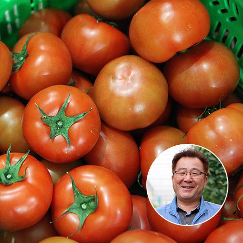 [산지장터] 전남 화순 고영국님의 GAP인증 토마토 3kg 4-5번과