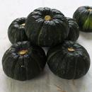 [농부마음] 국내산 미니 밤호박 보우짱 3kg(6-12수)