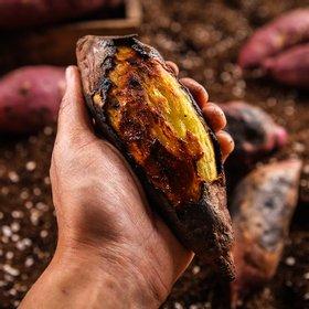 국내산 세척 꿀고구마(특상) 3kg