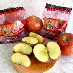경북 햇 부사 세척사과 가정용 5kg 22-24과