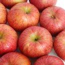 제철 사과 가정용 흠과 8kg 40과내