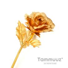 [타뮤즈] 24k 금장미-Gold Rose-프로포즈 G9014