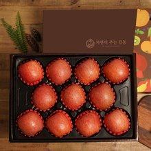 [자연의주는감동] 사과 5kg 10-13과 선물세트