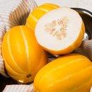 [다농이네]꿀당도 자랑하는 성주 참외 3kg 9과내