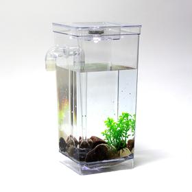 [다린] LED 자동청소어항 미니 물고기 구피 열대어 수조 세트