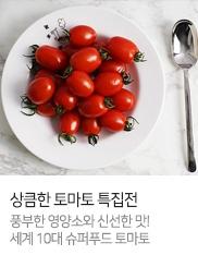 토마토 특집전