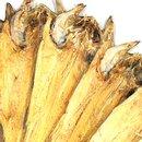 [용대리] 청정설악 황태포 13미 특사이즈(40~42cm) 개당 60g내외
