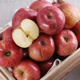 아삭 달콤한 사과 8kg 가정용흠과