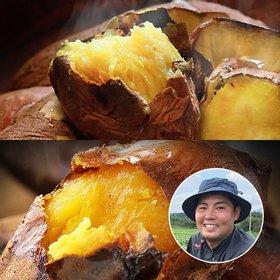 [산지장터] 고창 김민상님의 꿀 고구마 3kg+호박고구마 3kg [특상]