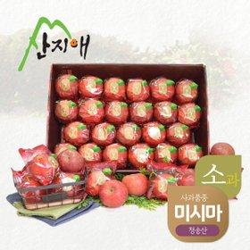 산지애 씻어나온 어린이 꿀사과 5kg 1box / 봉지 세척사과 , 당도선별 12brix ↑