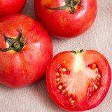 빨간 찰토마토 5kg 4-5번과 크기